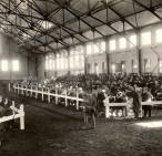 First Horse Sale at Farm - Oct. 31st, 1916 - Arena Show Horse Barn