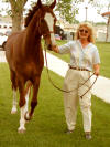 "Robyn Walker with Champion Hackney horse ""Louie."""