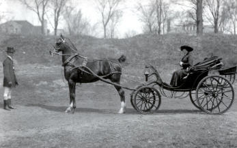 An Original Carriage.  CLICK on picture for enlarged view.